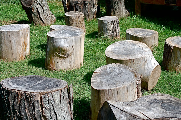 Outdoor-Classroom-Seating